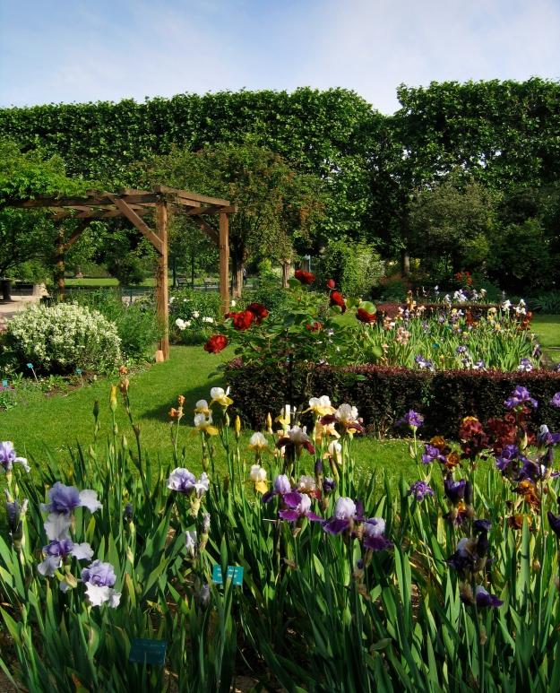 Jardin des iris et des plantes vivaces © MNHN