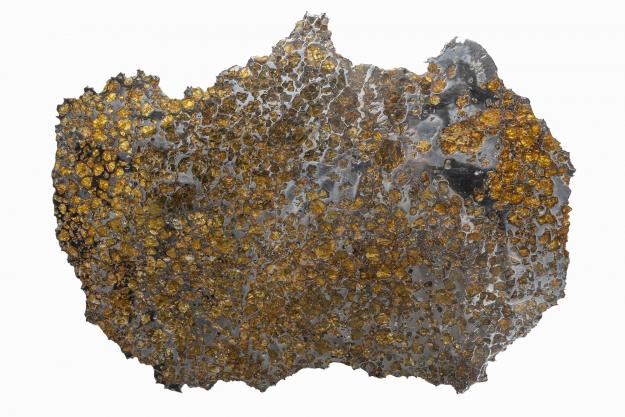 Méteorite Pallasite Imilac © MNHN - Bernard Faye