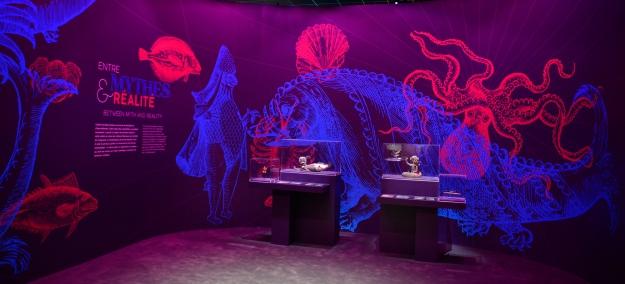Exposition Océan, une plongée insolite © MNHN - JC Domenech - Graphisme : © estelle maugras - je formule