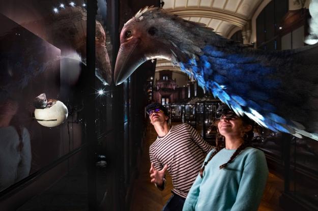 Revivre, les animaux disparus en réalité virtuelle - Aepyornis ou oiseau éléphant © SAOLA Studio - MNHN