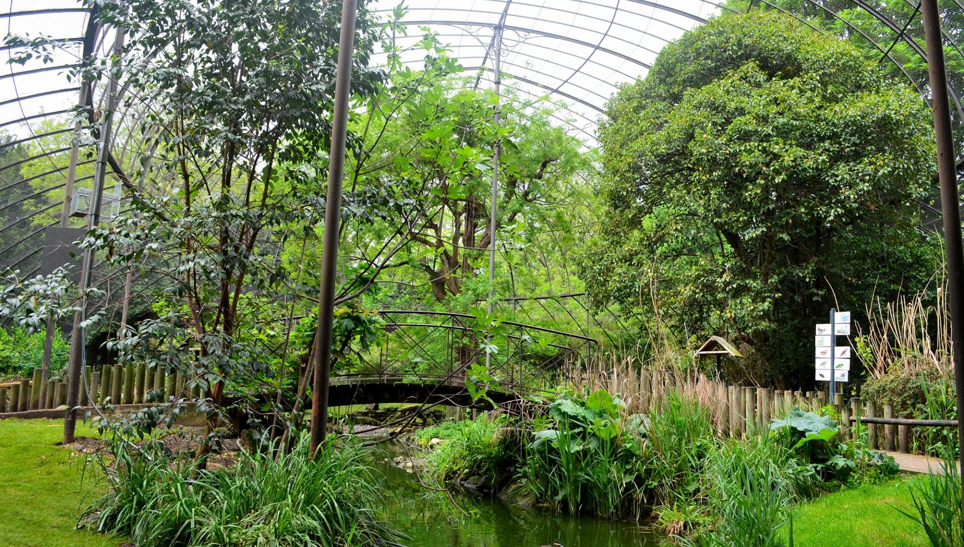 Grande volière - Ménagerie, zoo du Jardin des Plantes © MNHN - FG Grandin